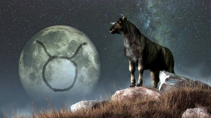 taurus-zodiac-symbol-daniel-eskridge.jpg