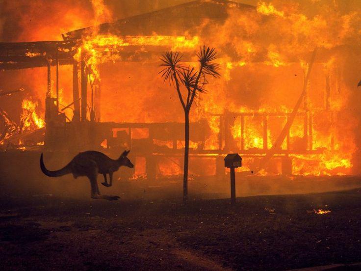 20200105_Australia_fires_16f748e5dcc_original-ratio.jpg